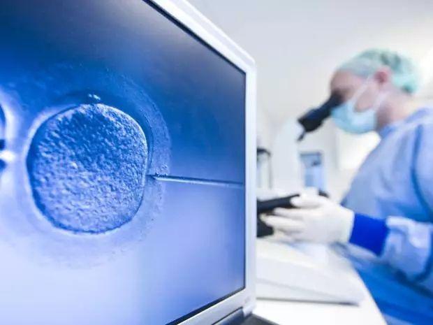 促排卵,冷冻胚胎,乌克兰助孕