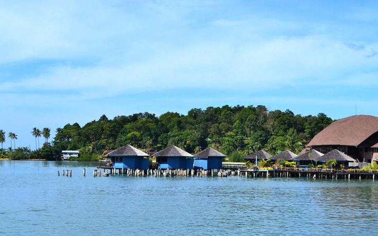 飞鱼国际旅游有限责任公司
